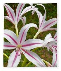 Peppermint Lilies Fleece Blanket