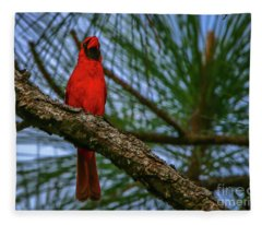 Perched Cardinal Fleece Blanket