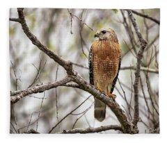 Perched Red Shouldered Hawk Fleece Blanket