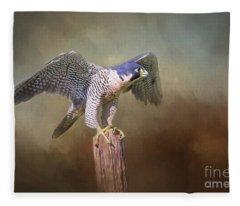 Peregrine Falcon Taking Flight Fleece Blanket