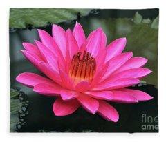 Perfect Pink Petals Of A Waterlily Fleece Blanket