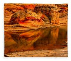 Petrified Dune Reflections Fleece Blanket
