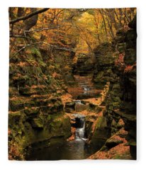 Pewit's Nest - Wisconsin Fleece Blanket