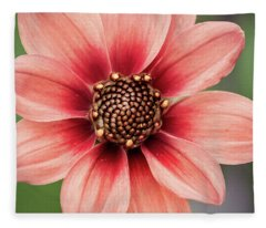 Pgc Dahlia Fleece Blanket
