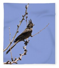Phainopepla Fleece Blanket