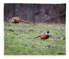 Fleece Blanket featuring the photograph Pheasant Pair by Steven Santamour