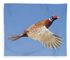 Pheasant Wings Fleece Blanket