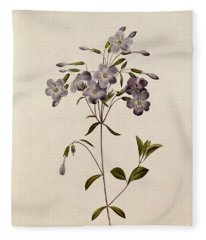Phlox Reptans Fleece Blanket