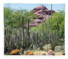 Phoenix Botanical Garden Fleece Blanket