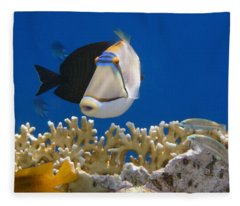 Picasso Fish And Klunzingerwrasse Fleece Blanket
