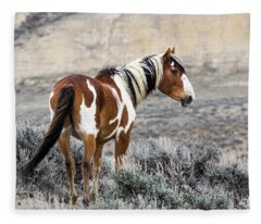 Picasso - Wild Mustang Stallion Of Sand Wash Basin Fleece Blanket