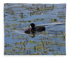 Pied Billed Grebe Lake John Swa Co Fleece Blanket