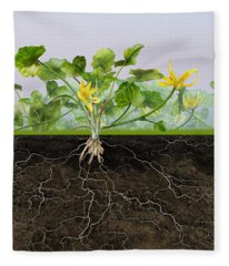 Pilewort Or Lesser Celandine Ranunculus Ficaria - Root System -  Fleece Blanket