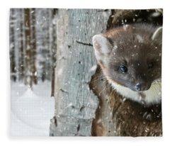 Pine Marten In Tree In Winter Fleece Blanket
