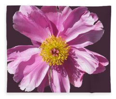 Pink Burst Fleece Blanket