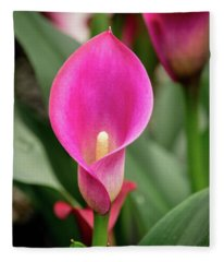 Pink Calla Fleece Blanket