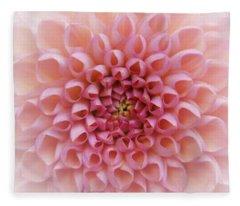Fleece Blanket featuring the photograph Pink Chrusanthemum by Jocelyn Friis