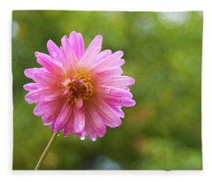 Pink Dahlia 1 Fleece Blanket
