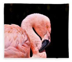 Pink Flamingo On Black Fleece Blanket