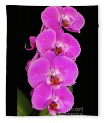 Pink Orchid Against A Black Background Fleece Blanket
