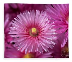 Pink Pigface Flowers Fleece Blanket