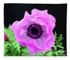 Pink Poppy Fleece Blanket