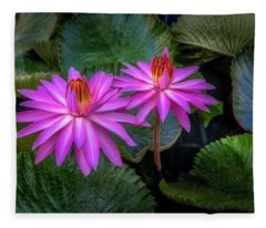 Pink Water Lilies Fleece Blanket