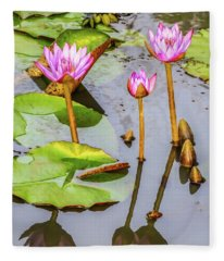 Pink Water Lilies In A Pond Fleece Blanket