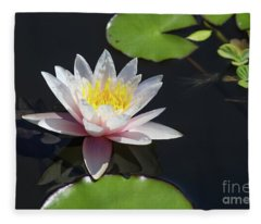 Pink Water Lily With Reflection In Dark Water Fleece Blanket