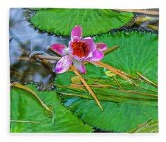Pink Waterlily Study Fleece Blanket