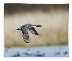 Pintail Duck Fleece Blanket