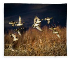 Pintails And Wigeons Fleece Blanket