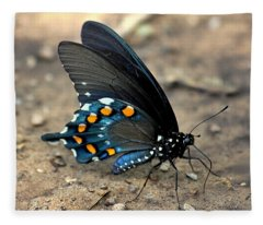 Pipevine Swallowtail Close-up Fleece Blanket