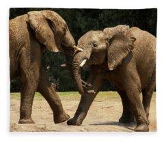 Playful Elephants Fleece Blanket