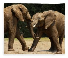 Playful Elephants Fleece Blanket