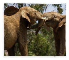 Playing Elephants Fleece Blanket
