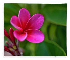 Plumeria - Royal Hawaiian Fleece Blanket
