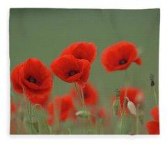Poppies In A Meadow Fleece Blanket