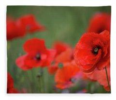 Poppy Head Fleece Blanket