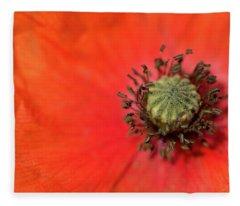 Poppy Nectar Fleece Blanket