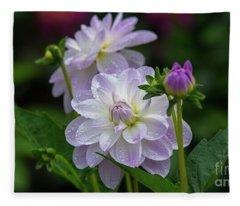 Porcelain Dahlias 2 Fleece Blanket
