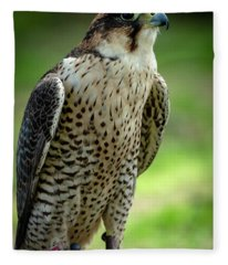 Portrait Bird  Fleece Blanket