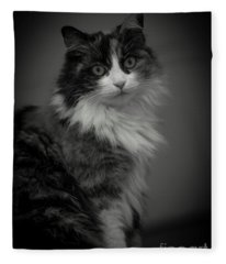 Fleece Blanket featuring the photograph Portrait Of A Cat by Mats Silvan