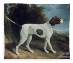 Portrait Of A Liver And White Pointer Fleece Blanket