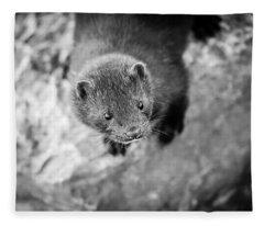 Fleece Blanket featuring the photograph Portrait Of A Mink by Steven Santamour