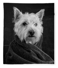 Portrait Of A Westie Dog 8x10 Ratio Fleece Blanket