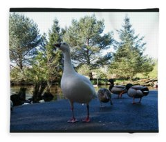 Poser Fleece Blanket