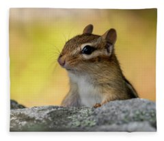 Posing Chipmunk Fleece Blanket