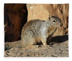 Posing Squirrel Fleece Blanket