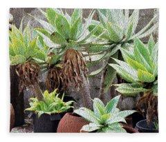 Potted Agave Plants Fleece Blanket